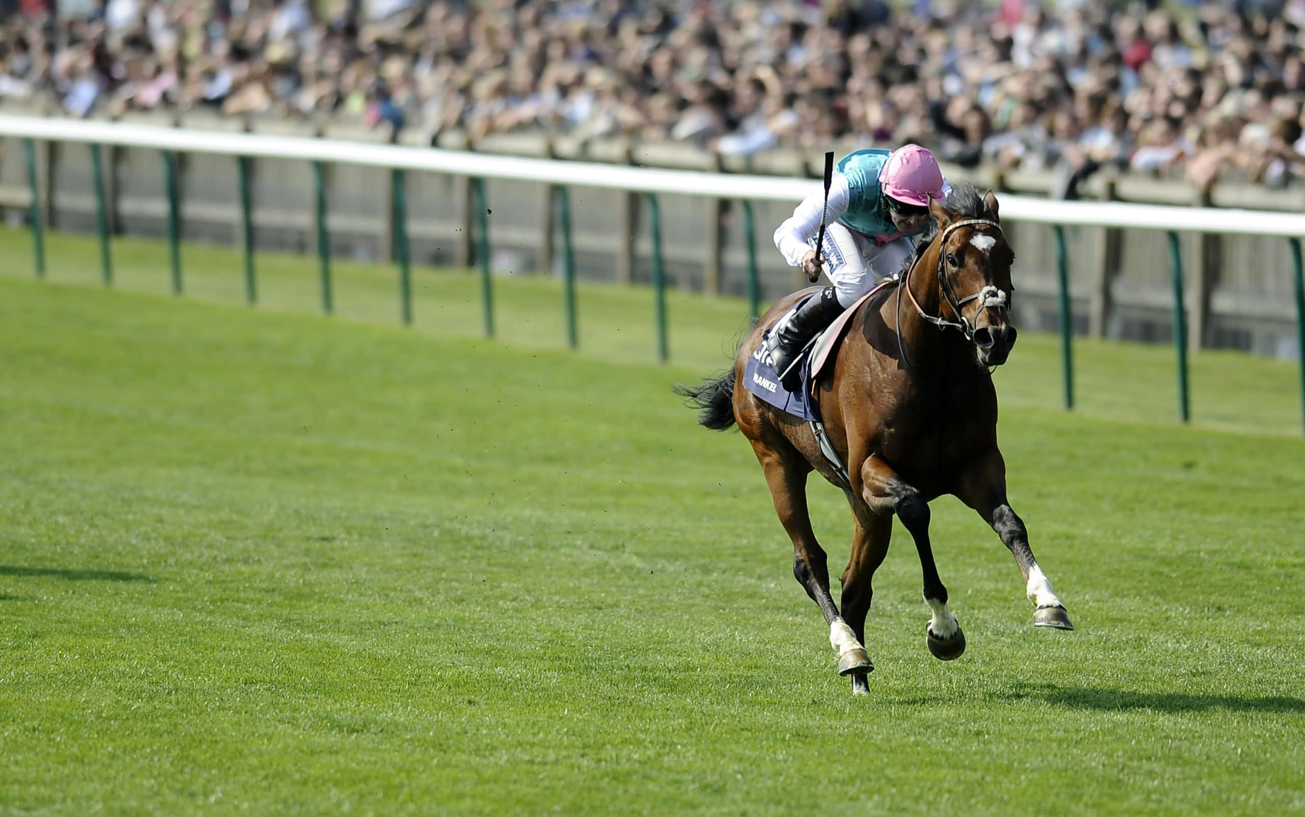 past winners 2000 guineas betting