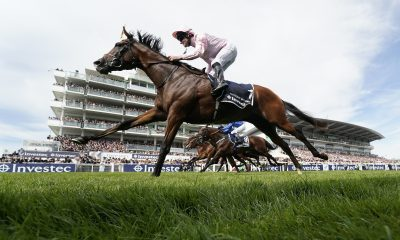 Newmarket betting preview