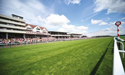 haydock betting preview
