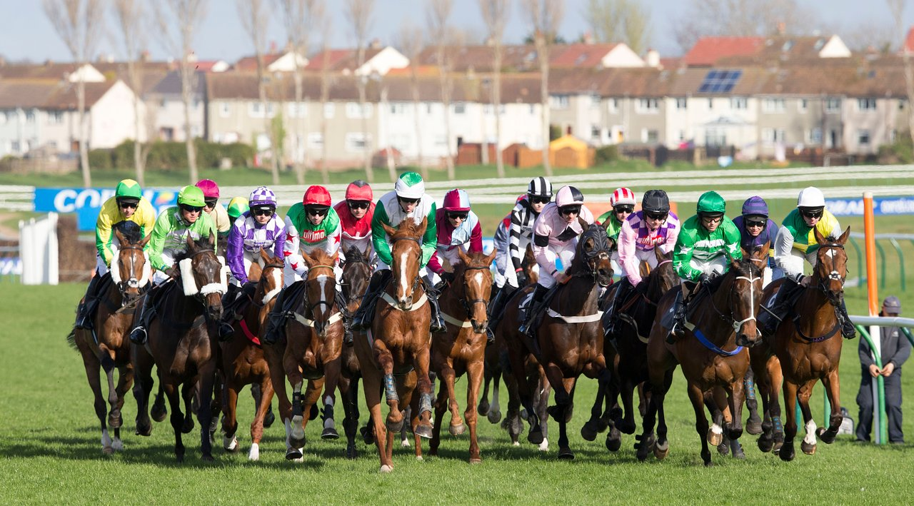 ayr betting preview
