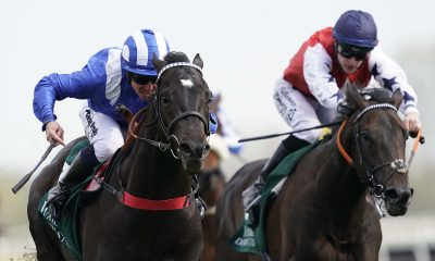 ascot betting preview