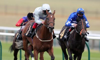 sandown tipping preview