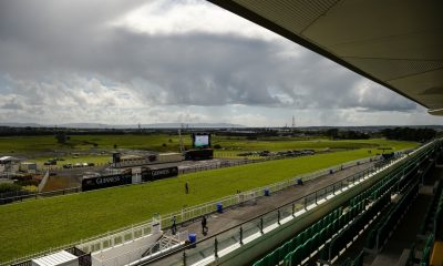 galway betting tips