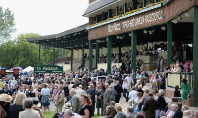 ripon betting tips