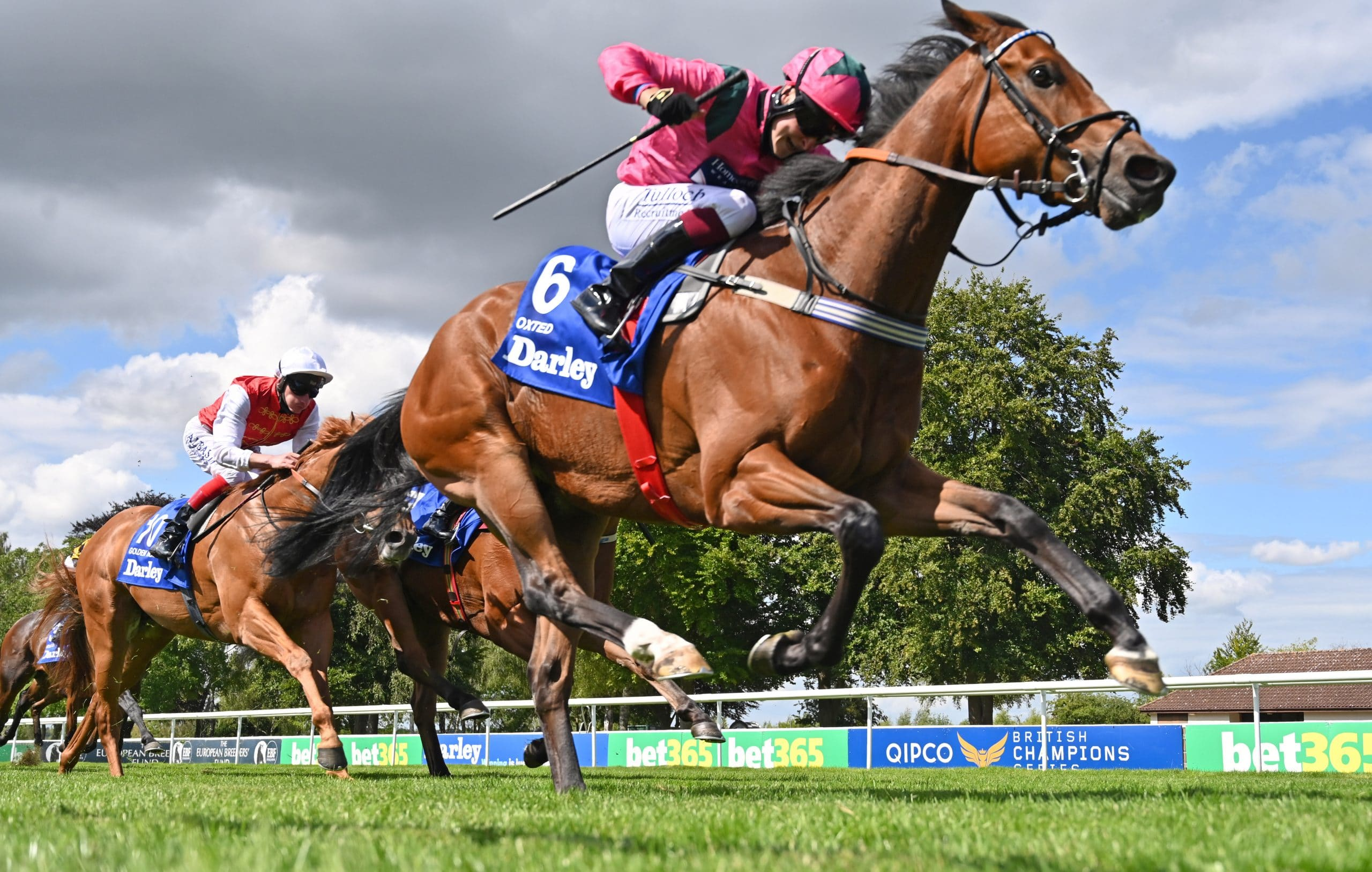 newmarket betting tips