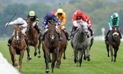 ascot betting tips