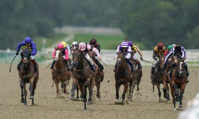 lingfield betting tips