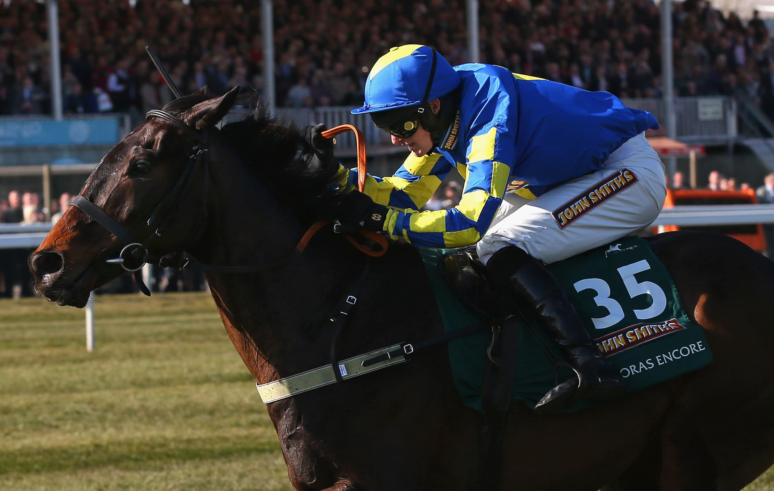 grand national outsiders
